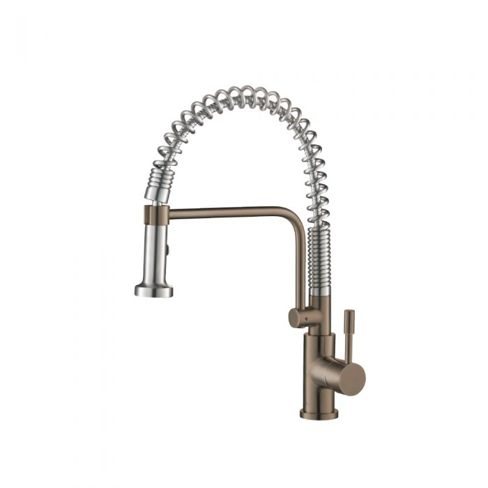 Kitchen Faucet with spring