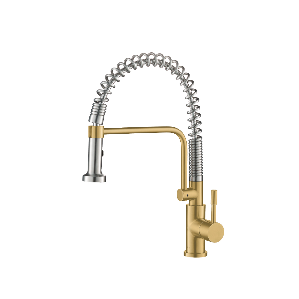 Shimmer Gold Kitchen Faucet with spring
